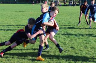Rugbyx1